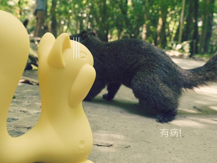 小松鼠 kiss toy 使用 玩具 情趣